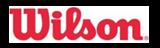 ロゴ:wilson